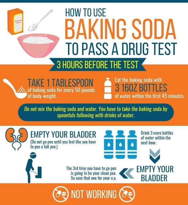 how to pass a urine drug test with baking soda - infographics