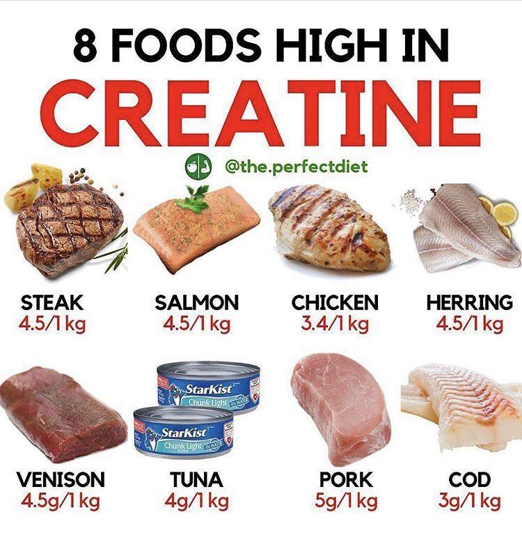 creatine rich foods